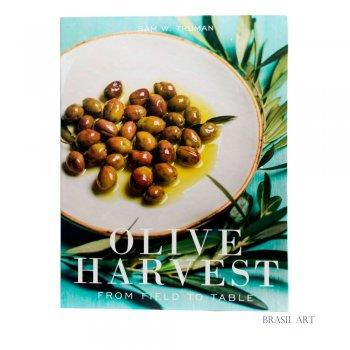 Livro Caixa Olive G